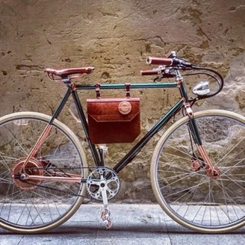 Rayvolt E-Bike – Ambassador